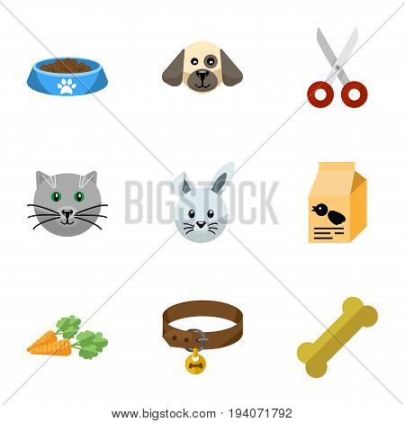 Flat Icon Animal Set Of Cat  Eating, Root Vegetable, Kitty And Other Vector Objects. Also Includes Bird, Bone, Pussy Elements.