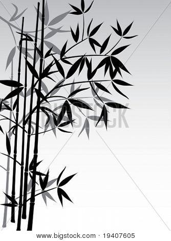 Bamboo background, vector illustration