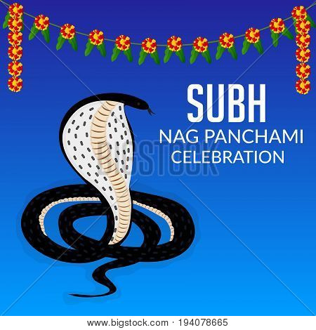 Nag Panchami_06_july_07