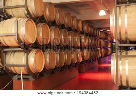 Old wine barrels in a wine cellar photo- Shabo, Odessa region, Ukraine, June 20, 2017