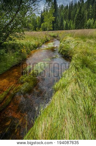 little river national park Sumava Czech republic Europe