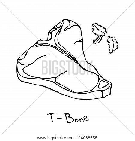 T-Bone Steak Cut Vector Isolated On White Background. Outline.