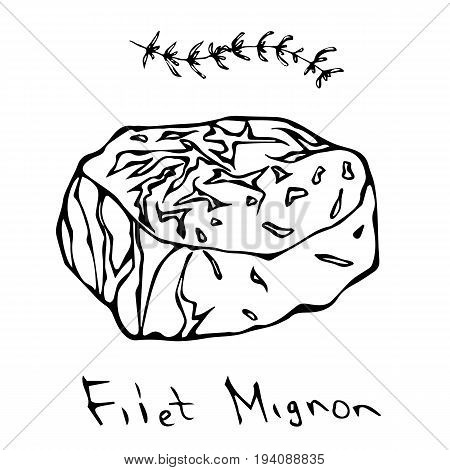 Filet Mignon Steak Cut Vector Isolated On White Background. Outline.