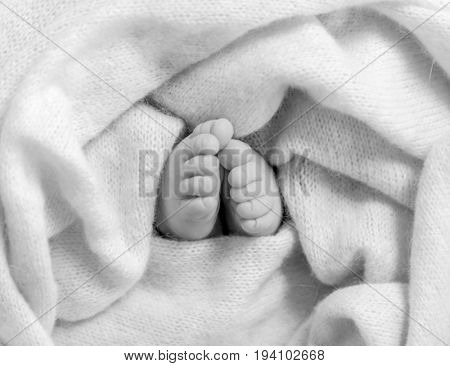 toes and toenails of newborn sleeping