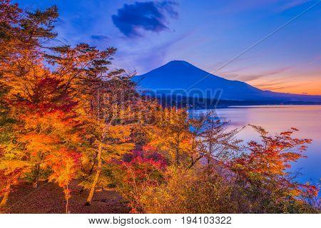 Mt. Fuji, Japan during autumn.