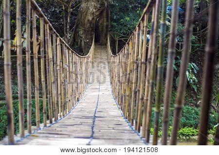 Bamboo pedestrian suspension bridge across the river in the rainforest