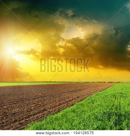 dramatic sky in sunset over green and black fields