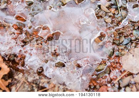 Macro closeup of frozen iced icicle on forest ground in winter