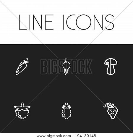 Set Of 6 Editable Vegetable Icons. Includes Symbols Such As Blackberry, Laughtering Grape, Raspberry And More. Can Be Used For Web, Mobile, UI And Infographic Design.