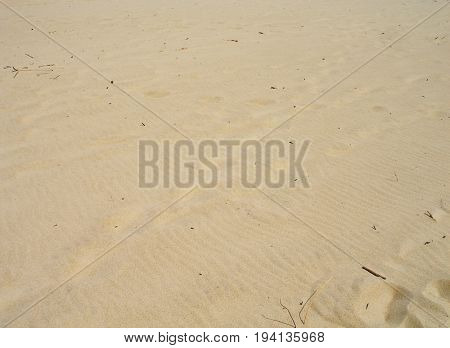 Beach sand with natural elements as background.