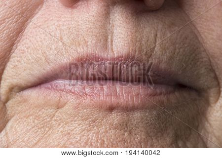 wrinkled woman skin - detail of face