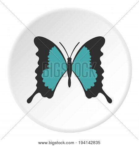 Butterfly with long wings icon in flat circle isolated vector illustration for web