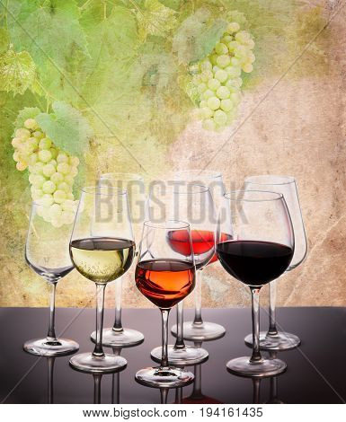 Wine tasting in wine yard, set of glasses with red, white and rose wine, grapevine in background