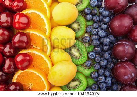 Colorful fruits rows - Cherries, oranges, apricots, kiwi blueberries and plums