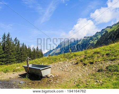 Landscape view of Swiss alps mountains and green hills during summer with water tub trough for cows