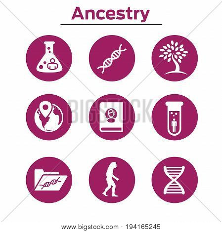 Ancestry Or Genealogy Icon Set With Family Tree Album, Dna, Beakers, Etc