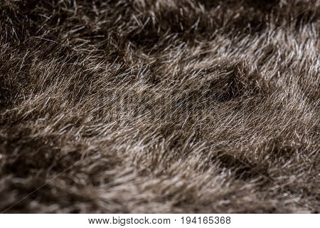 fur background and haircloth texture, abstract wallpaper