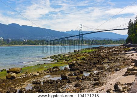 Northern Shore of Stanley Park landscape during low tide Vancouver Canada. Colorful mossy rocks and Lions Gates Bridge with mountains on the horizon.