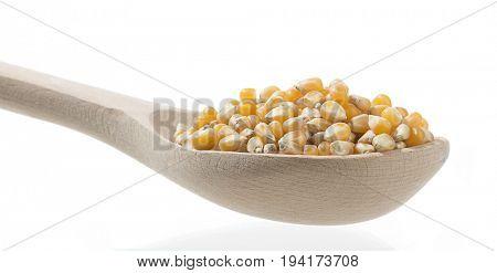 Shovel Full of Dried Corn
