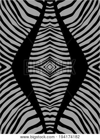 Zebra stripes , vector illustration abstract background