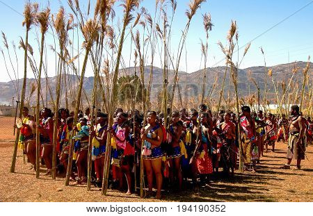 Women in traditional costumes marching at the Umhlanga aka Reed Dance ceremony - 01-09-2013 Lobamba Swaziland