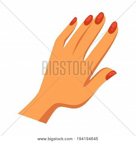 Womans feminine hand with shiny glossy neat red manicure isolated flat cartoon vector illustration on white background. Modern professional beauty procedure for nails health and elegant look.