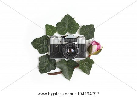 Floral frame made of green ivy leaves nymphaea waterlily purple flowers and vintage retro camera in the middle on white background. Flat lay top view.