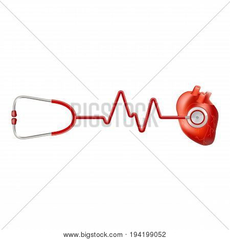 Human Heart And Heart Beat On Ekg With Stethoscope Isolated On A White Background. Realistic Vector Illustration. Medicine.
