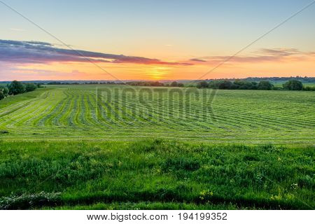 Twilight At Cultivated Land In The Countryside On A Summer.