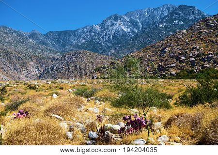 Arid, barren, and rural landscape with Mt San Jacinto beyond taken near Palm Springs, CA