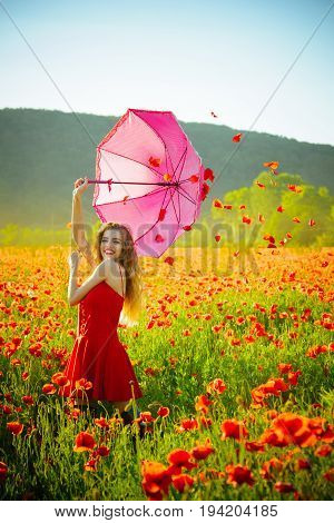 Woman In Field Of Poppy Seed With Umbrella