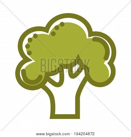 Green organic fresh broccoli isolated cartoon vector illustration on white background. Healthy vegetable thick green outline. Tasty vegetarian natural food grown on farm with lot of vitamins.