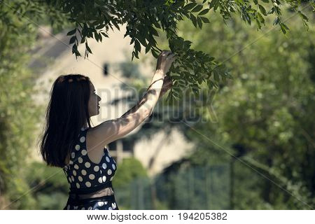 Woman looks at branch and leaves in nature way. Woman in spotted dress and red hair. Sunny and positive rural scene with happy woman.