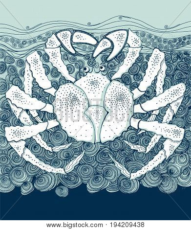 marine life big crab in decorative style. hand drawn vector illustration.