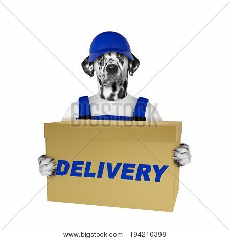 Dalmatian dog delivery yellow post box -- isolated on white background