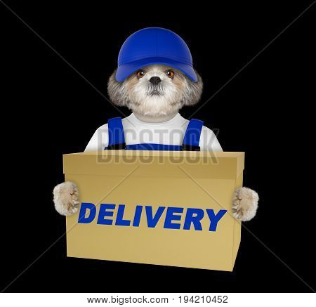 Cute dog delivery yellow post box -- isolated on black background