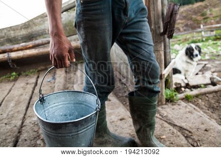 Worker on the farm with metal bucket.