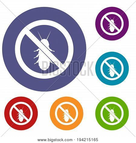 No termite sign icons set in flat circle reb, blue and green color for web