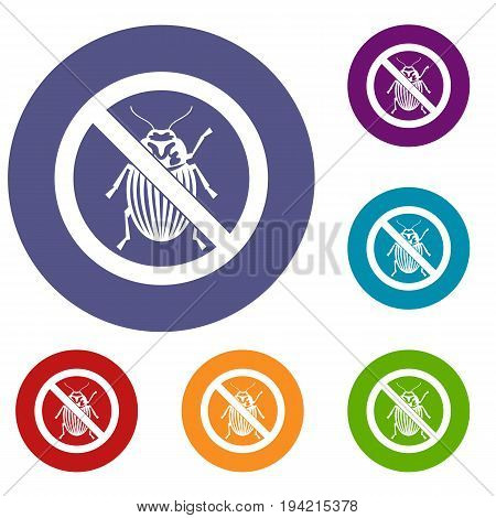 No potato beetle sign icons set in flat circle reb, blue and green color for web