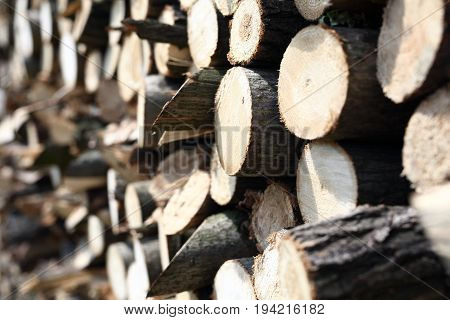 Firewood. Cut firewood and fireplace. Fuel wood stored in a cell for storing wood.