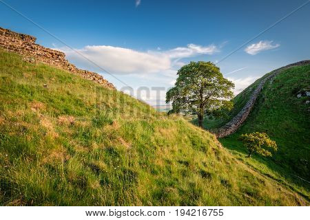 Hadrian's Wall at Sycamore Gap, is a World Heritage Site in the beautiful Northumberland National Park. Popular with walkers along the Hadrian's Wall Path and Pennine Way