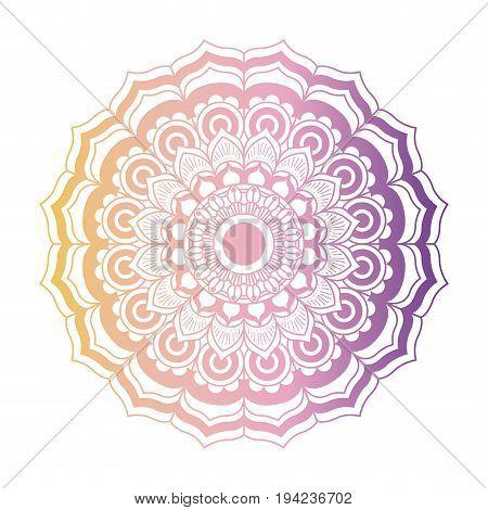 yellow and purple color gradient brilliant flower mandala vintage decorative ornament in closeup vector illustration