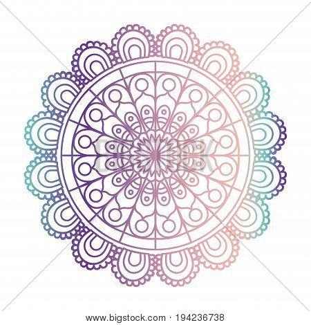 blue and purple color gradient brilliant flower mandala vintage decorative ornament in closeup vector illustration