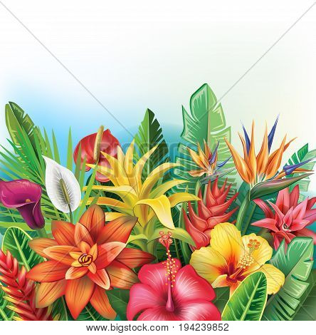 Background from tropical tropical plants and flowers