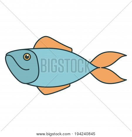 colorful silhouette of salmon fish vector illustration