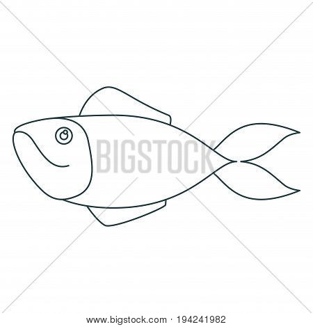 monochrome contour of salmon fish vector illustration