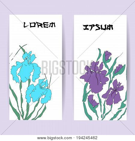 Two templates of vertical banners. Illustration with hand-drawing illustration, vectorized irises. Stylized traditional Chinese painting, Japanese art sumi-e, vector