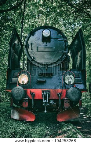 LOCOMOTIVE - Steam locomotive on the track among the trees