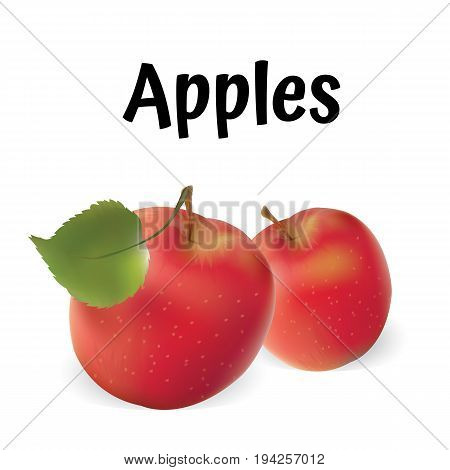 Apples illustration. Vector apples red. Realistic apples