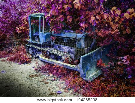 Old fashion antique worn rusted construction full track crawler blue tractor among green trees. Hue color agricultural industry machine crawler tractor blade vehicle. Abstract tractor background